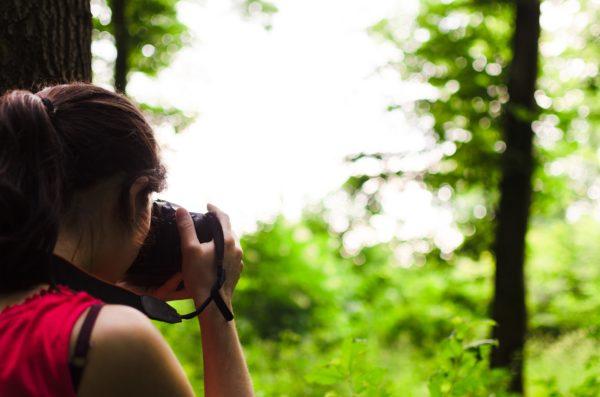 Fotojakt i naturen