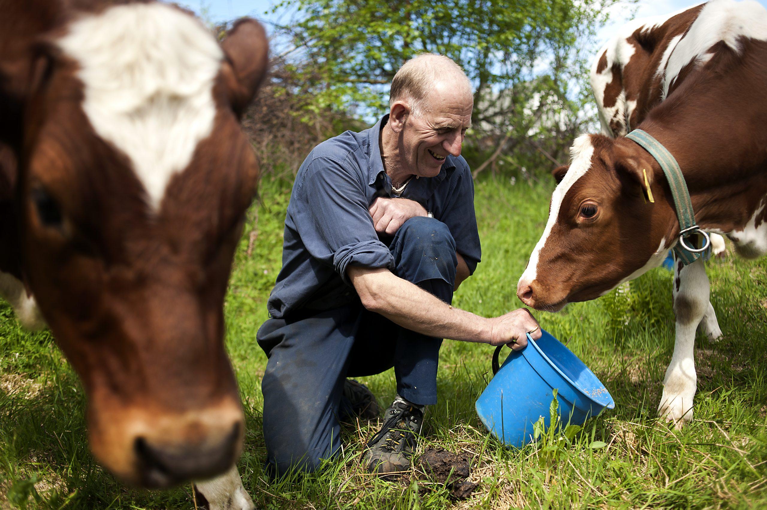 Quiz om gårdsbruk